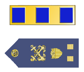 Rank badge of a Chief Warrant Officer 2