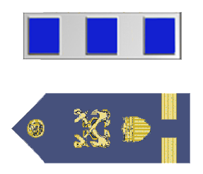Rank badge of a Chief Warrant Officer 4