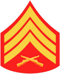 Rank badge of a Sergeant