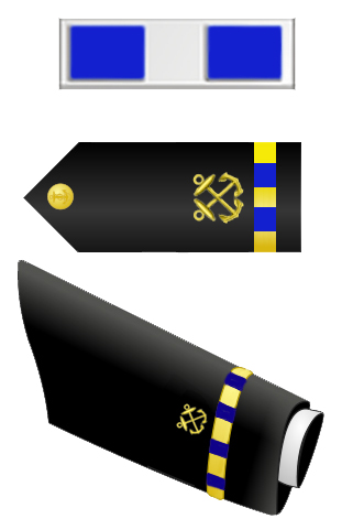 Rank badge of a Chief Warrant Officer 3